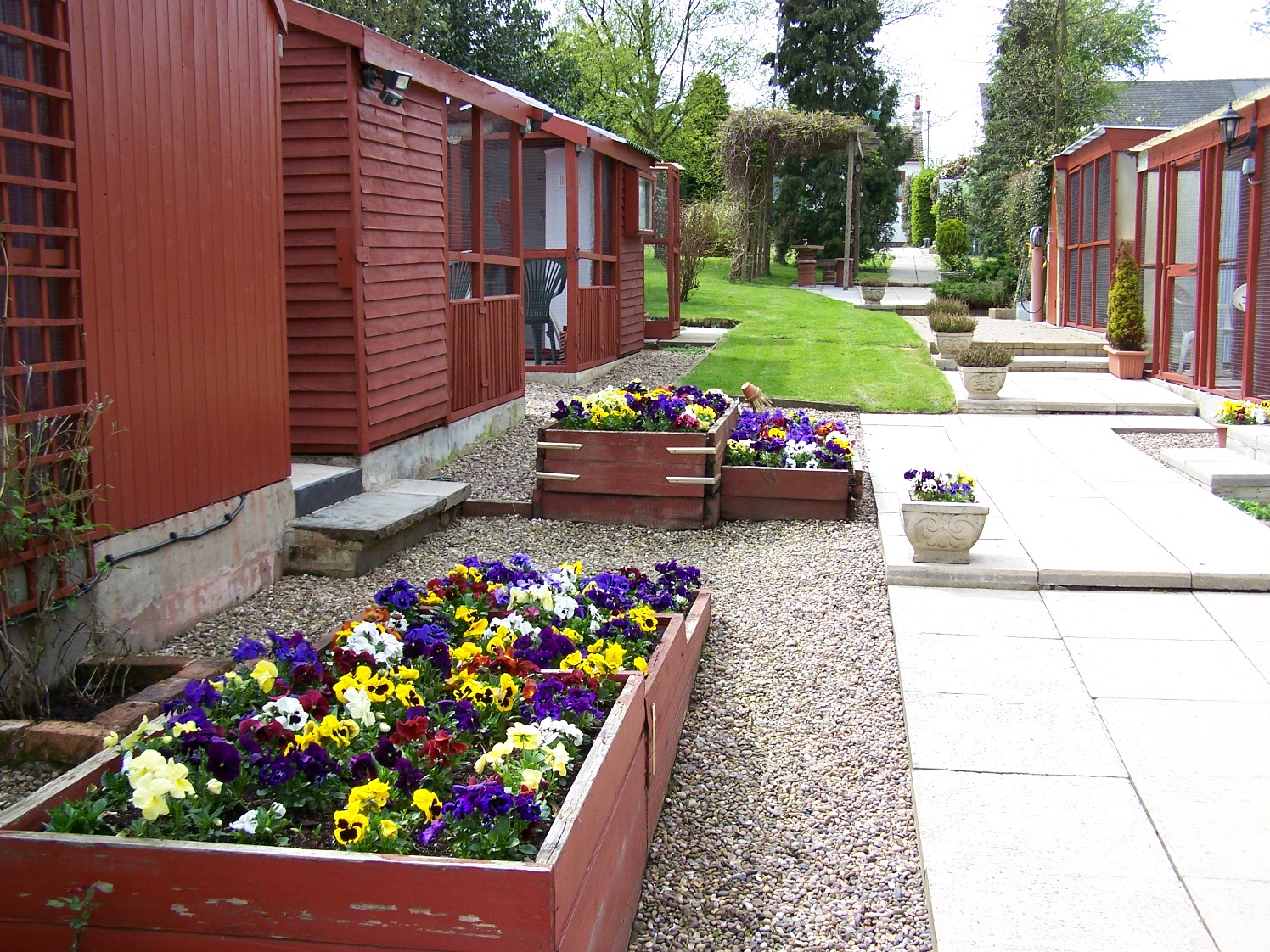 Cattery Flower Beds