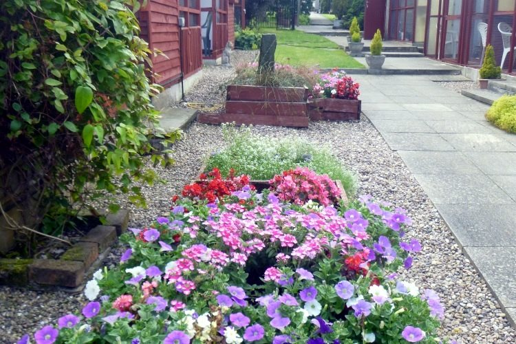 Flower beds in August